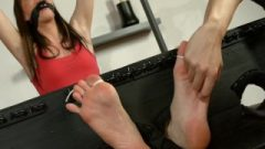 Choked Feet Lightly Tormented And Bound Toes Abby